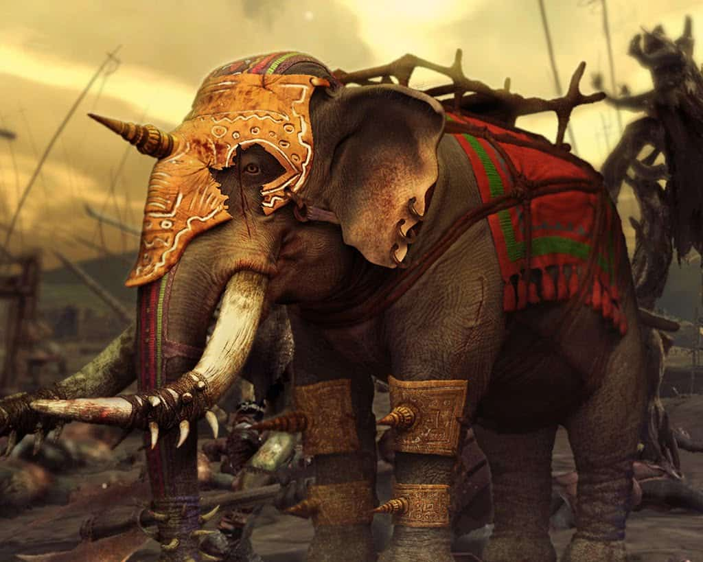 elefante na tailandia